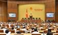 Vấn đề hoàn thiện pháp luật về MTTQ Việt Nam tham gia bầu cử đại biểu Quốc hội và đại biểu HĐND