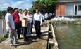 Đoàn Mặt trận Lào Xây dựng đất nước tham quan các mô hình kinh tế tại Cần Thơ