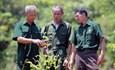 Cựu chiến binh làm giàu từ mô hình chăn nuôi và trồng rừng