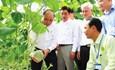 Những điểm sáng của ngành nông nghiệp Việt Nam giai đoạn 2016 - 2020