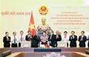Mặt trận Tổ quốc Việt Nam tham gia xây dựng pháp luật góp phần phòng, chống tham nhũng