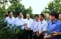 Quan điểm của Chủ tịch Hồ Chí Minh về liêm chính công vụ - vận dụng vào xây dựng đạo đức công vụ của cán bộ, công chức nước ta hiện nay