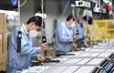 OECD hạ dự báo tăng trưởng kinh tế toàn cầu, cảnh báo hồi phục bấp bênh