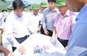 Tiếp tục hoàn thiện hệ sinh thái thể chế để thúc đẩy doanh nghiệp nhà nước tích cực tham gia xây dựng nền kinh tế Việt Nam độc lập, tự chủ trong bối cảnh mới
