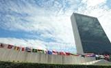 40 năm Việt Nam là thành viên chính thức của Liên hợp quốc