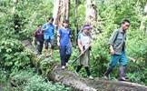 Bảo vệ rừng để hạn chế lũ ống, lũ quét
