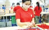 Kinh tế tư nhân: Động lực quan trọng trong phát triển kinh tế Việt Nam