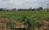 Lãng phí đất công ở TP.HCM: Ai chịu trách nhiệm?