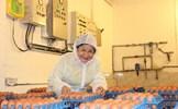 """Doanh nghiệp Ba Huân được rót 32 triệu USD: Trứng Việt """"lên ngôi"""""""