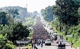 """Làn sóng di cư đổ về Mỹ: Chính sách nhập cư """"nóng"""" trở lại"""