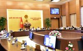 Cho ý kiến về dự án Luật sửa đổi, bổ sung một số điều của Luật Cán bộ, công chức và Luật Viên chức