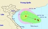 Áp thấp trên Biển Đông có khả năng mạnh thành bão và diễn biến rất phức tạp