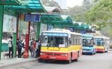 Phân làn cho xe buýt: Lợi bất cập hại, thất bại cao hơn thành công