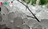 Không khí lạnh tràn về gây mưa lớn có khả năng xuất hiện mưa đá