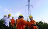 EVNNPC đảm bảo thực hiện tốt công tác dịch vụ khách hàng trong dịp Tết Nguyên đán