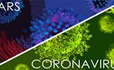 Dịch virus Corona và đại dịch SARS khác nhau thế nào?