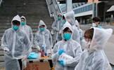 492 người tử vong trên toàn cầu do dịch virus corona