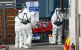 Số ca nhiễm Covid-19 ở Hàn Quốc tăng lên 556 người tử vong
