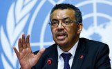"""WHO nâng cảnh báo toàn cầu về virus SARS-CoV-2 lên mức """"rất cao"""""""
