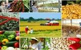 Tiếp tục thực hiện Nghị quyết TW7 về nông nghiệp, nông dân, nông thôn