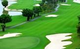 GS. Vũ Trọng Hồng: Đề xuất của Chủ tịch UBND tỉnh Bắc Ninh xây dựng sân golf sát sông Đuống không thể chấp nhận được