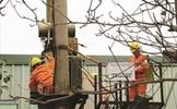 Công ty Điện lực Hải Dương: Tại sao lại bao che cho người sai phạm?