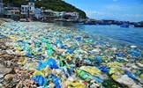 """MTTQ Việt Nam các cấp hưởng ứng phong trào """"chống rác thải nhựa"""" gắn với bảo vệ môi trường"""