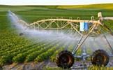 Khát vọng phát triển nông nghiệp Việt Nam