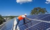 Số lao động trong lĩnh vực năng lượng tái tạo vượt mốc 10 triệu người