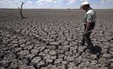 Nỗ lực ứng phó với biến đổi khí hậu của các quốc gia trên thế giới