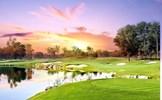 Lời khuyên từ các chuyên gia Y tế: Thể thao golf mang đến cuộc sống khỏe mạnh