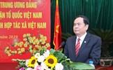 Phát triển kinh tế hợp tác xã để nâng tầm chuỗi giá trị nông sản Việt