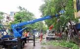Tổng Công ty Điện lực Miền Bắc khẩn trương khắc phục sự cố sau cơn bão số 3