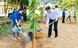 Nhiều địa phương phát động 'Tết trồng cây đời đời nhớ ơn Bác Hồ'