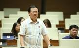 Đề xuất thí điểm dân trực tiếp bầu Chủ tịch UBND tại Đà Nẵng