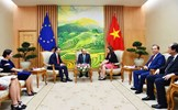 Nâng cao hiệu quả công tác ngoại giao kinh tế phục vụ phát triển đất nước