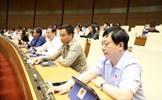 Quốc hội biểu quyết thông qua Luật Thanh niên (sửa đổi)