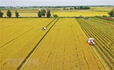 Ban hành Nghị quyết kéo dài thời hạn miễn thuế sử dụng đất nông nghiệp
