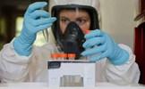 Các nước đẩy nhanh nỗ lực sản xuất vaccine
