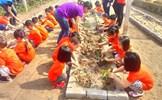 Du lịch sinh thái nông thôn - hướng đi mới ở một xã ngoại thành Hà Nội