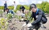 Tác động của biến đổi khí hậu đến hòa bình, an ninh quốc tế hiện nay và đề xuất đối với Việt Nam