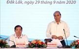 Thủ tướng Nguyễn Xuân Phúc chủ trì Hội nghị phát triển cây mắc ca tại Việt Nam