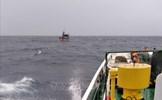 Khắc phục hậu quả bão số 9: Đã cứu được 3 ngư dân Bình Định trôi dạt trên biển