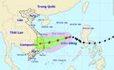 Bão giật cấp 11 hướng vào các tỉnh Quảng Ngãi đến Khánh Hòa