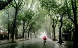 Bắc Bộ và Bắc Trung Bộ trời chuyển rét, có mưa rào kèm dông lốc