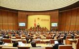 Hôm nay 25/3, Quốc hội tiếp tục nghe trình và thảo luận tại tổ về các báo cáo công tác nhiệm kỳ 2016-2021