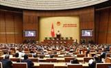 Tuần làm việc thứ 2 của Kỳ họp thứ 11: Quốc hội xem xét, quyết định công tác nhân sự Nhà nước