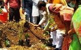 Ấn Độ xây công viên từ tro cốt của nạn nhân COVID-19