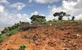 Thành phố Móng Cái thu hồi hòn đảo 8ha vì san gạt đất rừng sai quy định