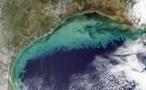 Giới khoa học phát hiện 'vùng chết' khổng lồ dưới đáy Vịnh Mexico